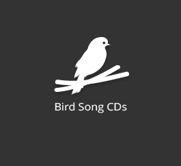 Bird Song CDs